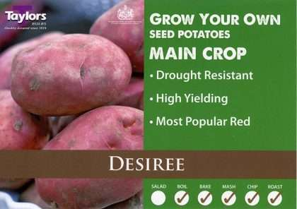 Desiree Seed Potato