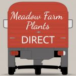 Meadow Farm Plants Direct